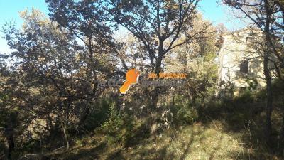 MONTAGNAC. A vendre beau terrain terrain constuctible 2081m²